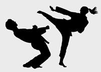 Insieme con le arti marziali